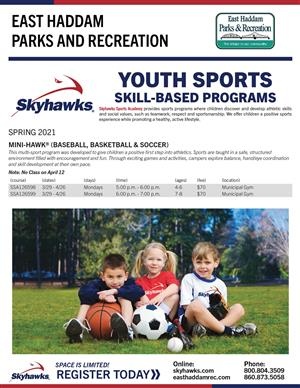 Skyhawk Mini-Hawk Spring 2021